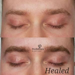 Healed male brows